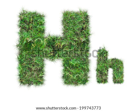 letter H on green grass isolated on over white background