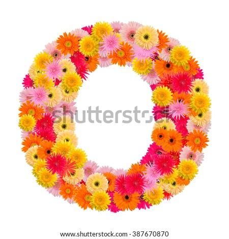 Letter O alphabet with gerbera  isolated on white background   - stock photo