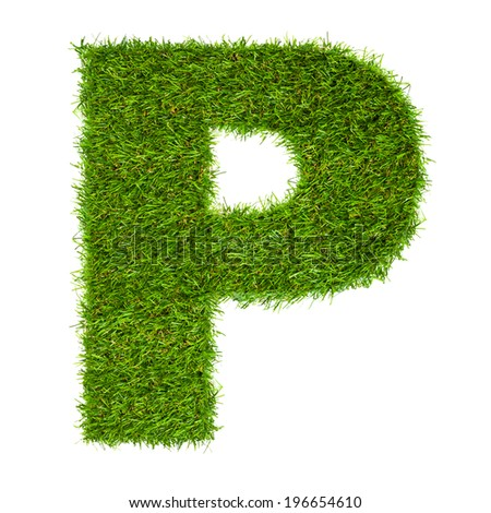 Letter P made of green grass isolated on white - stock photo