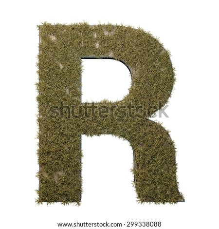 Letter R made of dead grass, growing on wood with metal frame - stock photo