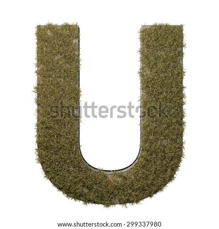 Letter U made of dead grass, growing on wood with metal frame - stock photo