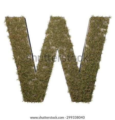 Letter W made of dead grass, growing on wood with metal frame - stock photo