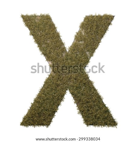 Letter X made of dead grass, growing on wood with metal frame - stock photo