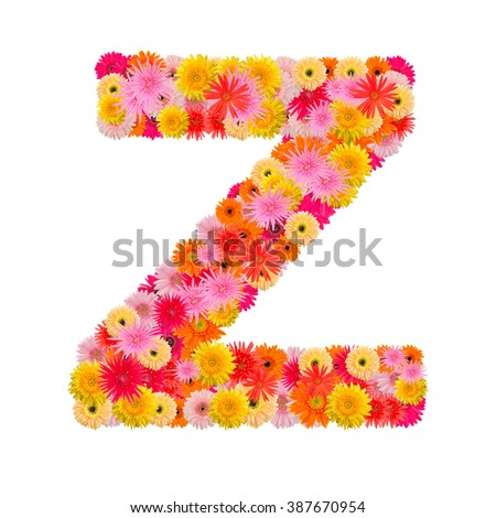 Letter Z alphabet with gerbera  isolated on white background   - stock photo