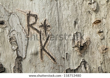Letters R and K engraved on a tree trunk  - stock photo