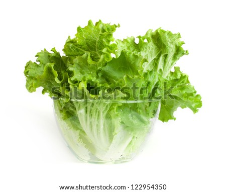 Lettuce in a glass bowl. White isolated - stock photo