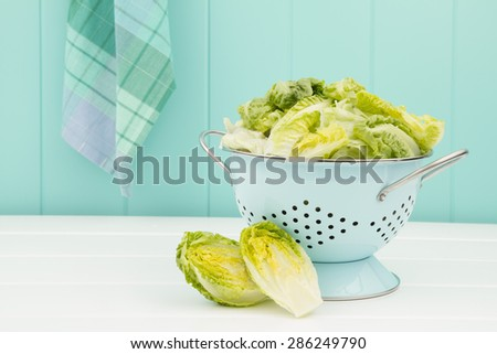 Lettuce in a turquoise strainer on a white wooden table. A turquoise wainscot in the background.