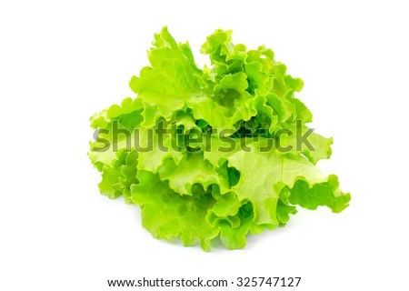 Lettuce isolated on a white cutout