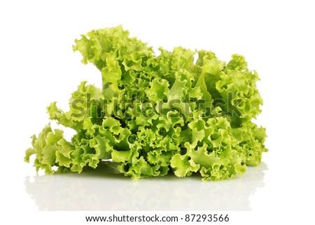 lettuce isolated on white - stock photo