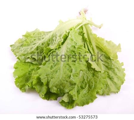 Lettuce leaves closeup on white - stock photo