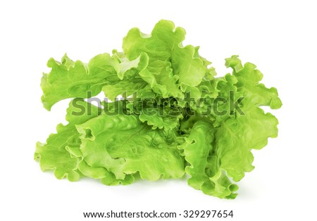 Lettuce leaves isolated on a white cutout. - stock photo