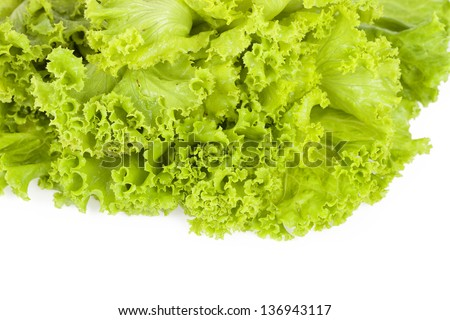 Lettuce on white background.