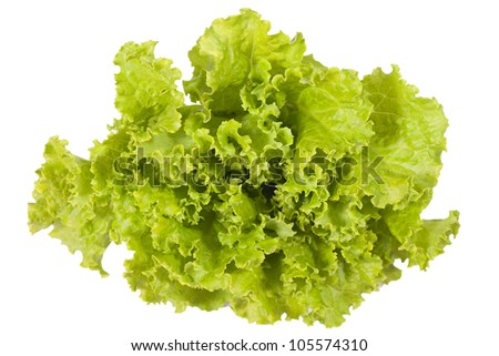 Lettuce salad isolated on white.