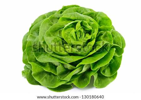 Lettuce Salad Isolated On White - stock photo