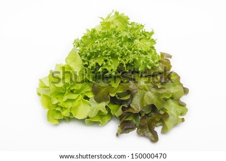 Lettuce salad mix - stock photo