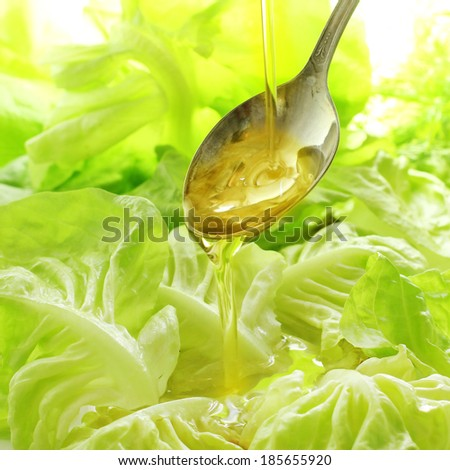 Lettuce salad with olive oil - stock photo