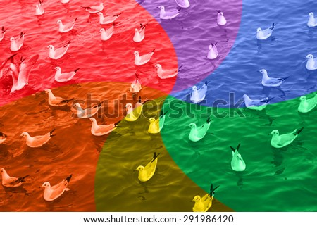 LGBT or GLBT lesbian, gay, bisexual, and transgender flag background bird and sea for sexual diversity freedom concept. - stock photo