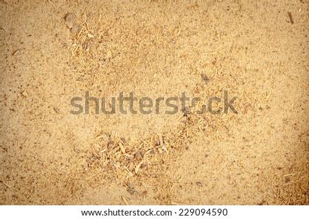 Licorice root powder - stock photo