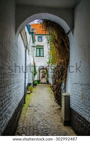LIEGE, BELGIUM, APRIL 13, 2014:narrow street in historical center of belgian city of liege is full of ivy crawling on walls.