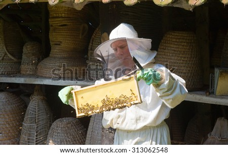 LIEVELDE, THE NETHERLANDS - AUG 08, 2015: An apiarist is checking the frame of a honeycomb and wearing protective clothes - stock photo
