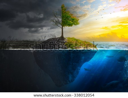 Life and death on a floating island at sunset. - stock photo