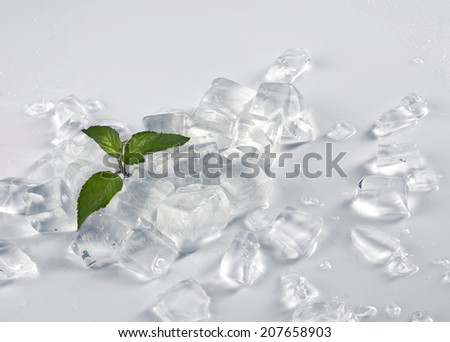 life design - ice cubes and little green plant on light grey background