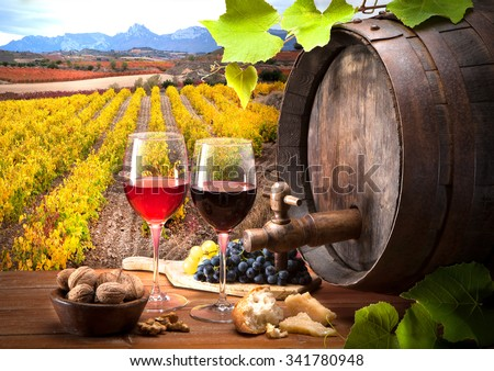 life from wine in the field - stock photo