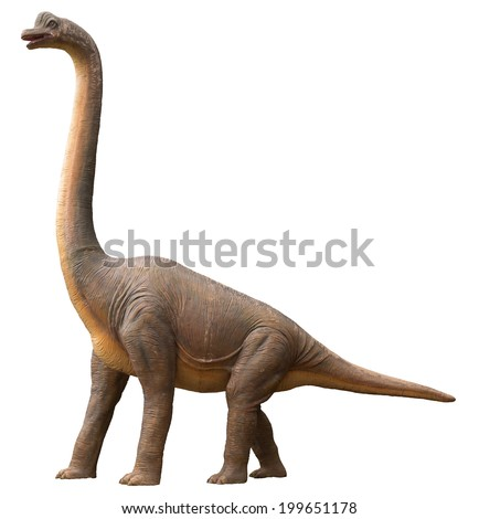 Life-like sauropod dinosaur which was a high browser and herbivore living during the Jurassic period, isolated on white - stock photo