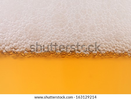 Light beer background. Half background froth and beer. - stock photo