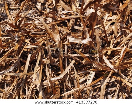 light brown dried grass straw hay on earth floor outdoor under sunlight on a warm sunny day  - stock photo