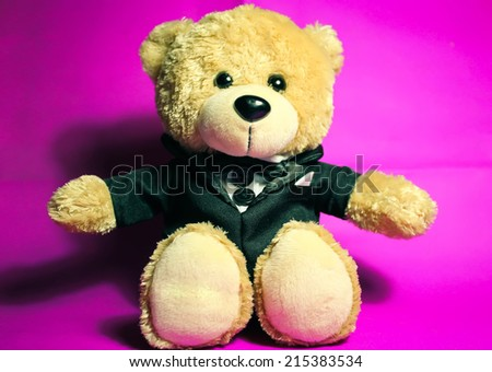 light brown teddy bear on purple background - stock photo