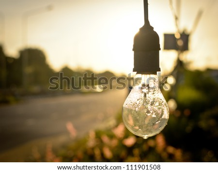 light bulb after rain in morning - stock photo