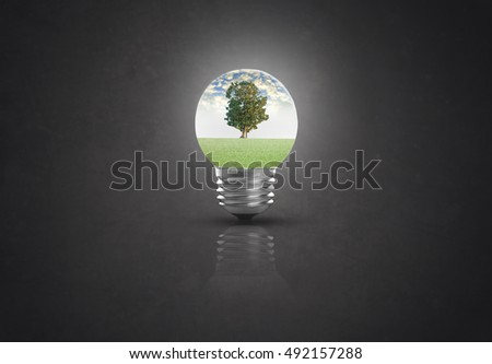 light bulb against tree on black background. ecological and energy concept