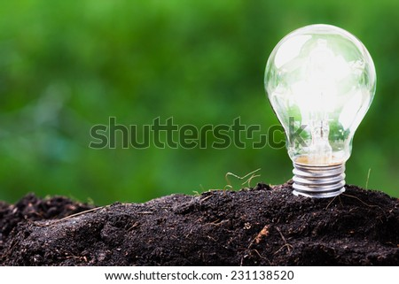 Light bulb glowing in soil as idea or energy concept - stock photo