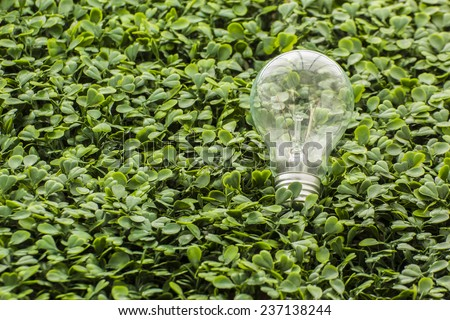 Light bulb in the grass - stock photo