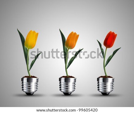 light bulb made from tulips , light bulb conceptual Image. - stock photo