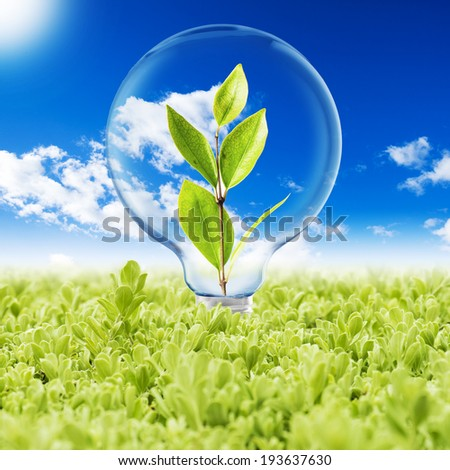Light Bulb on green grass with plant inside and butterfly and cloudy blue sky background. Concept for Go Green and Ecology - stock photo