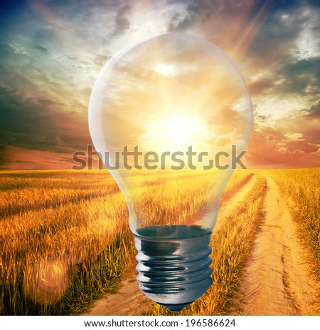 Light bulb with a sunshine inside in field. Environment, eco technology and solar energy concept. - stock photo