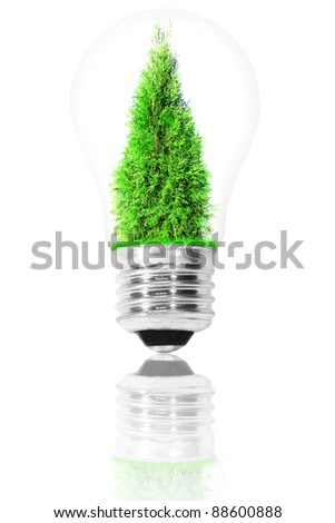light bulb with a tree