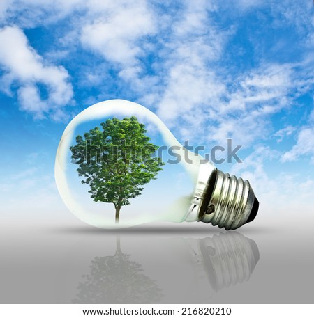 Light bulb with a tree growing. Environment, eco technology and energy concept. - stock photo