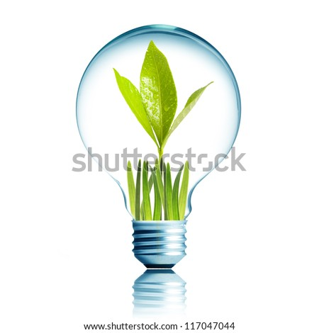 Light Bulb with green grass and green plant sprout inside - stock photo