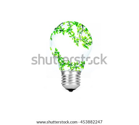 Light bulb with green tree branch inside  isolated on white background , eco concept