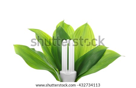 Light bulb with leaves, isolated on white