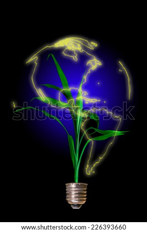 Light bulb with plant growing in the form of the globe. Concept of Eco technology - stock photo
