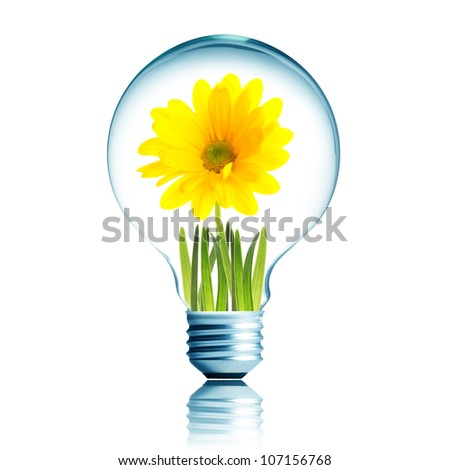 Light Bulb with soil and yellow flower plant inside - stock photo
