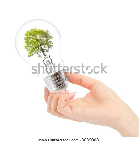 Light bulb with tree inside in hand isolated on white. Environmental concept Renewable Energy - stock photo