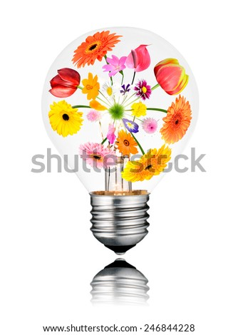 Light Bulb with Various Colorful Flowers Growing Inside from Center to the Edges. Isolated White Background. Light bulb has a reflection - stock photo