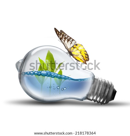 Light Bulb With Water Inside and butterfly on white background - stock photo