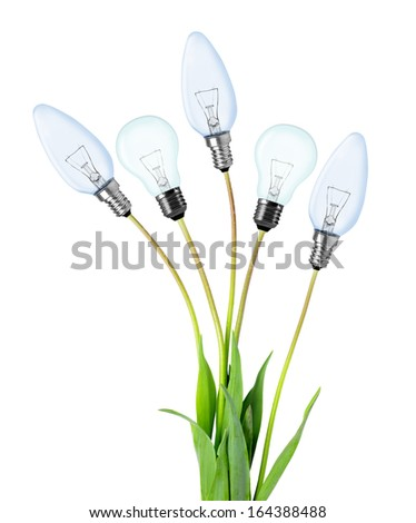 Light bulbs on plant isolated on white - green energy concept - stock photo