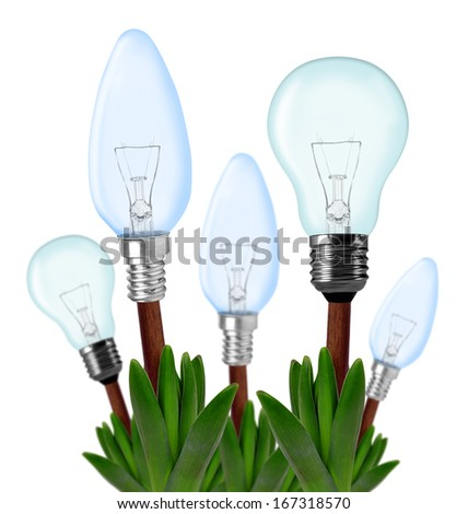 Light bulbs on plant isolated on white - green energy concept
